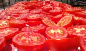 Pomodori preparazione