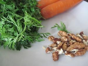 pesto di foglie fresche di carote
